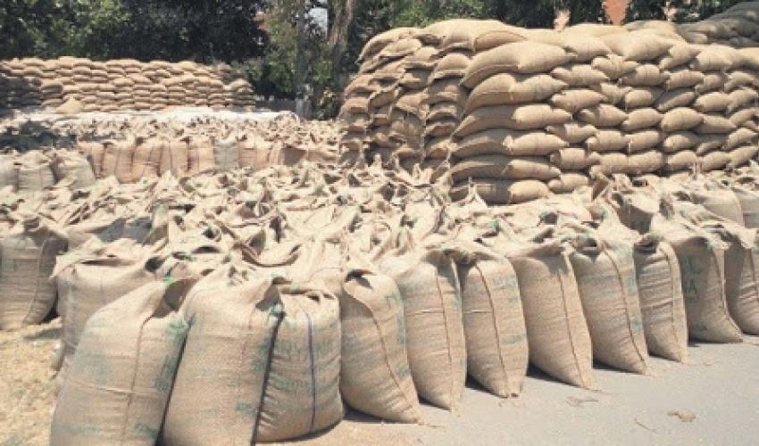 सुदूरपश्चिमको पहाडी जिल्लामा खाद्य संकटको चिन्ता, संकट नहुने प्रशासनको दाबी