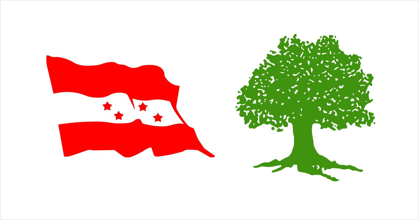 तिहारअघि सबै जिल्लाको वडा अधिवेशन सक्ने कांग्रेसको तयारी